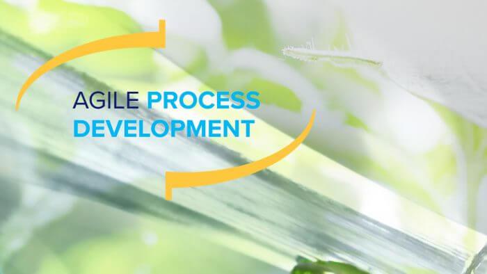 Whitepaper: Agile process development