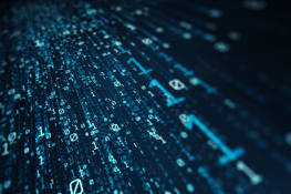 Data management: too many variables?
